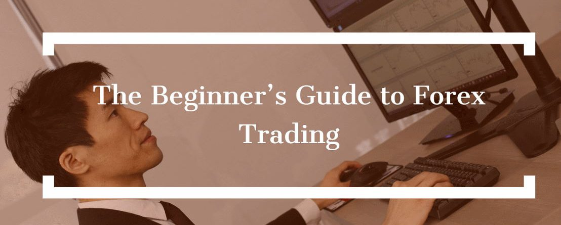A Beginner's Guide to Forex Trading Strategies