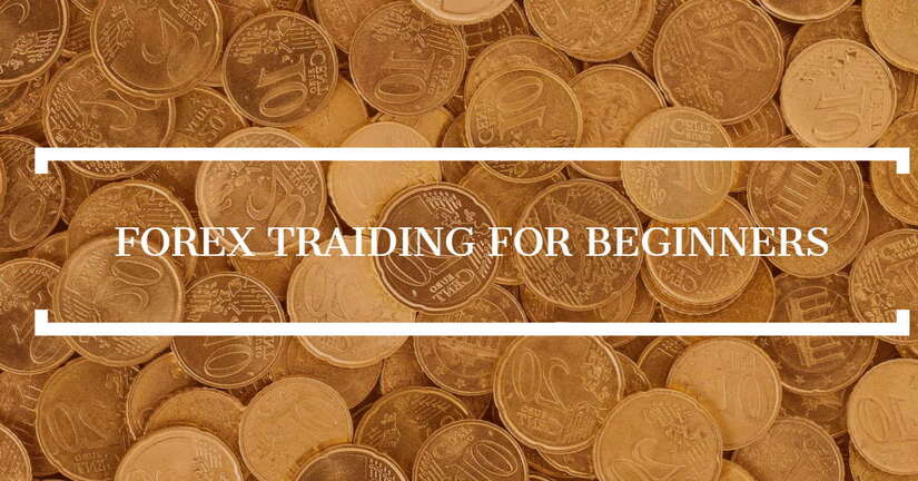 Forex trading for beginners img